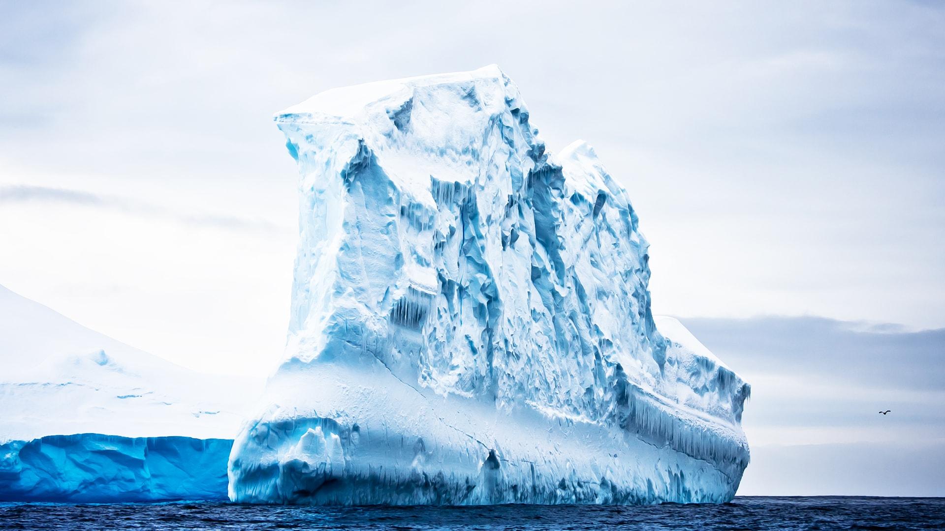 Viaje a la Antártida a medida y exclusivo