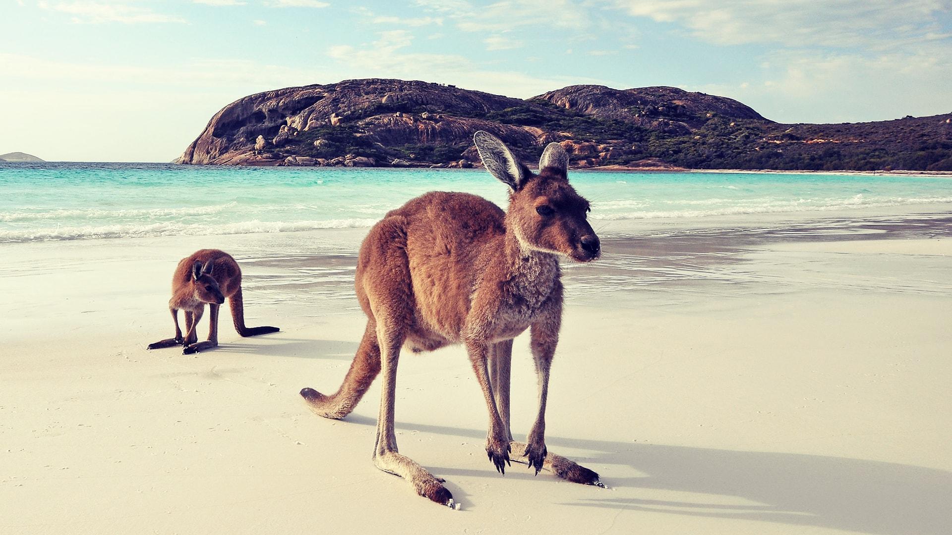 Viaje a medida a Australia