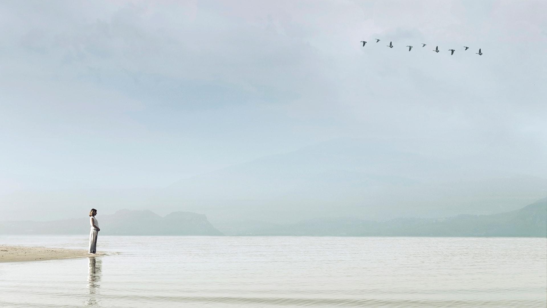 Descubre los Viajes de Transformación de NUBA