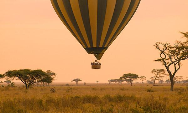Los mejores safaris por Tanzania