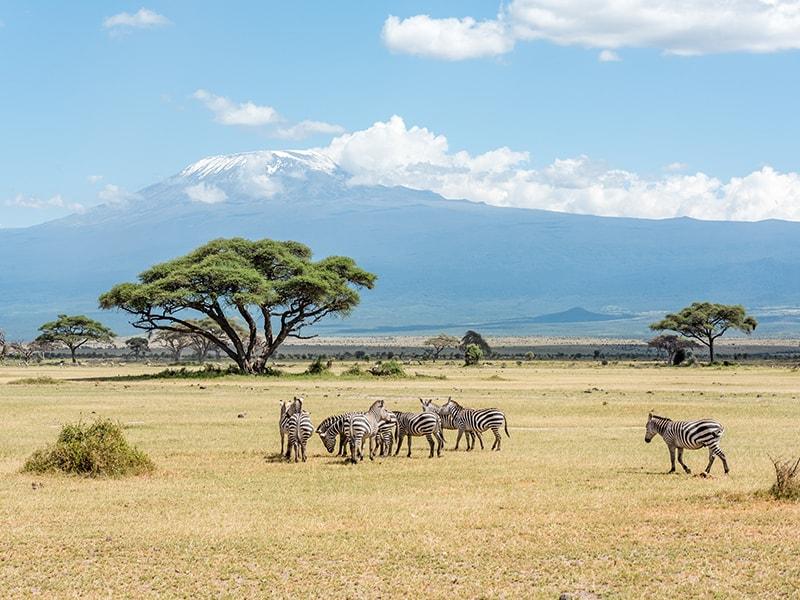 Kenia. Safari en bicicleta por Chyulu Hills