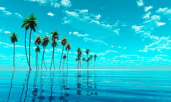 Viaja a la Polinesia a medida