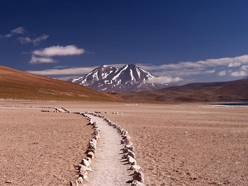 Chile. Safari en el desierto
